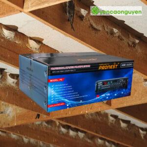 Thùng Âm Ly PRONEST P6 SWIFTLETS AMPLIFIER (800 LOA)