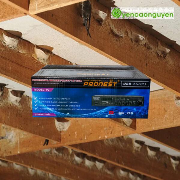 Thùng Âm Ly trong nhà yến PRONEST P2 SWIFTLETS AMPLIFIER